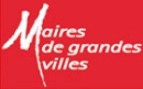 Logo_AMGVF_2